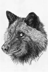 Inktober 2018 drawing 15- Black wolf by MsAlayniousCreations
