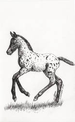 Inktober 2018 drawing 17- prancing foal by MsAlayniousCreations