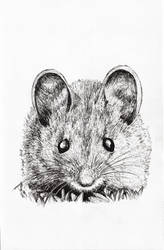 Inktober 2018 drawing 27- Little House Mouse by MsAlayniousCreations