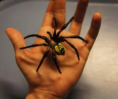 Garden Spider - handmade by Escaron