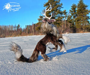Quill in Wild - Posable Art Doll by Escaron