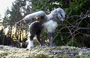 Buckbeak - Artdoll (Sold) by Escaron