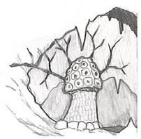 Violet Fungus sketch by vonmeer