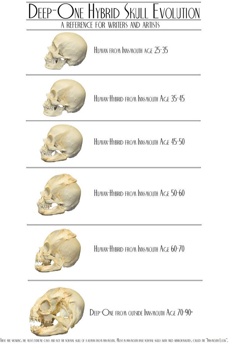 Deep One Hybrid Skull Evolution by vonmeer
