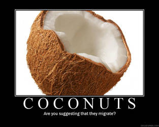 Coconuts Poster by Firegale
