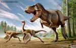 Tyrannosaurus rex VS Struthiomimus by haghani