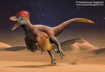 Velociraptor by haghani