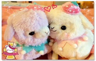 Alpaca Love by RuRuVictoria