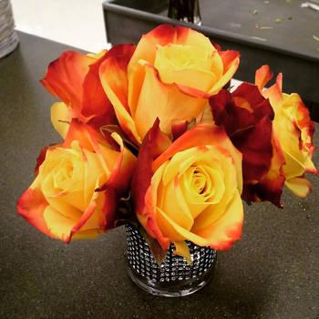 Rocker Mini Rose Bowl by pippierafrostlin