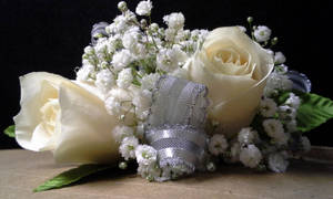 Double White Rose Wrist Corsage - Silver by pippierafrostlin