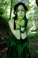 Pagan Fairy by oruth