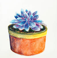 Blue succulent by Booksdust