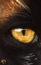 Dragon cat ! by LordSkizz