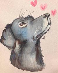 Puppy Love by ameyxo