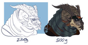 GUILDWARS 2 COMMISSIONS! by LiLaiRa