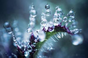 Spikes And Drops by JoniNiemela