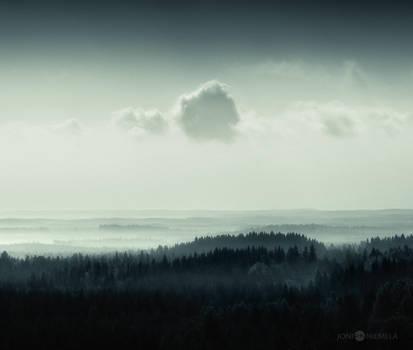 Tree Hill Forest by JoniNiemela