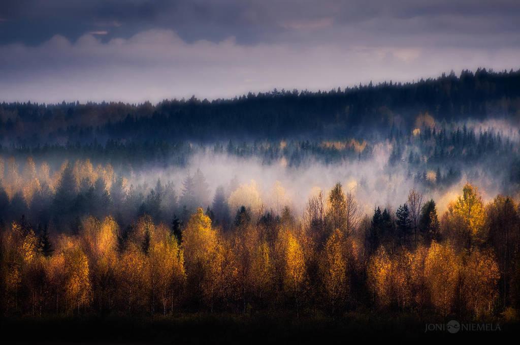 Colors Of Autumn by JoniNiemela