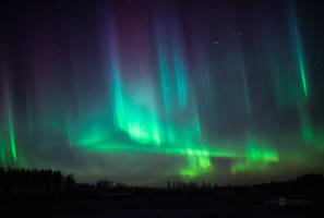 Northern Lights Of Christmas by JoniNiemela