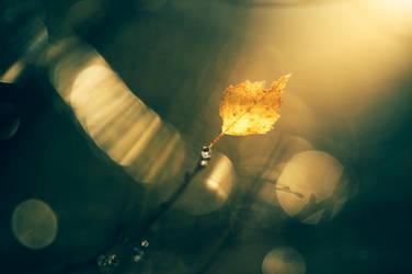 Reaching The Light by JoniNiemela