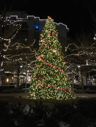 Down town Christmas tree (day15) by sarahsuz