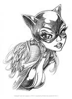 CATWOMAN 75 - TOON STYLE by Karafactory