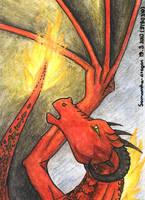 Fire versus Rain by Samantha-dragon
