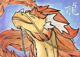 Year of the Dragon -2012- by Samantha-dragon