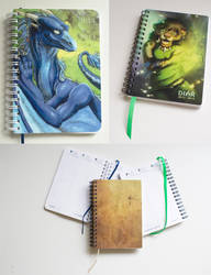 Set of diaries September 2013 - September 2014 by Samantha-dragon