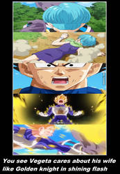 You See Vegeta cares about his wife bulma by KeybladeMagicDan