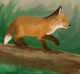 Little Fox by Chajiko