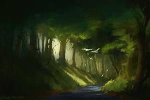 Forest stream by EinarNordstrom