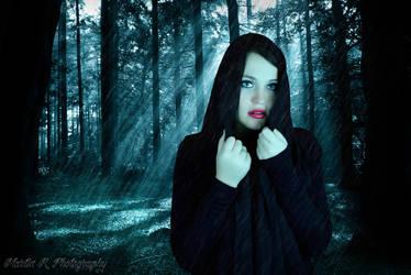 rain in the woods by Radlingmayer