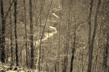 Elk Creek Eastern Ky. by pipaspases