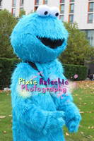 Cookie Monster Cosplay, MCM Expo October 2013 by Pixie-Aztechia