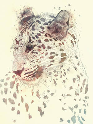 Juxtapose - 4 by Raekre