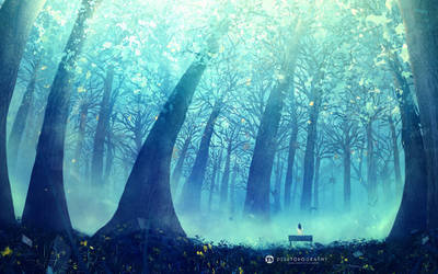 Water Forest by Raekre
