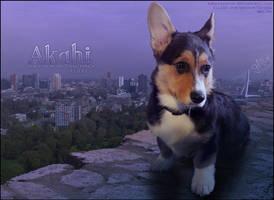 akahi by glitchHP