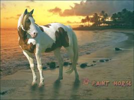 hawaiian paint by glitchHP