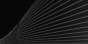 lines by adibudojo