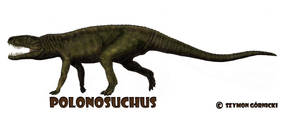 Polonosuchus (polonozuch) by Szymoonio