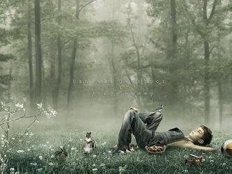 Simple Life II by jorgeremmy