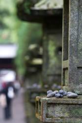 Nikko Lanterns by Salgor