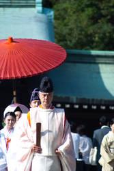 Meiji Jingu priest by Salgor