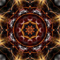 Joe's Lotus by Joe-Maccer