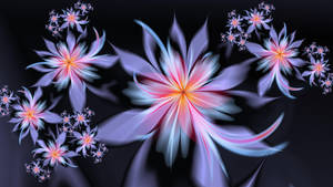 Lotus Feet by Joe-Maccer
