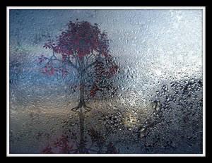 Through The Haze by Joe-Maccer