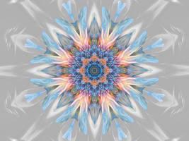 Flowers In December by Joe-Maccer