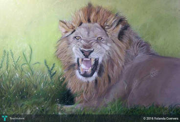 Lion-painting by dierenpastels