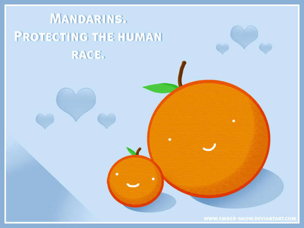 WALLPAPER: Mandarin Protection by ember-snow
